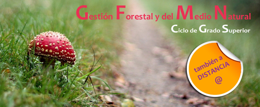 Gestión Forestal y del Medio Natural