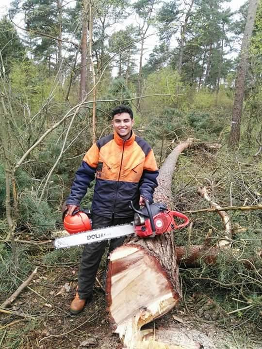 Victor Requena Fontestad, Trabajos forestales en Alemania